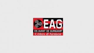 eaGuingamp_grey