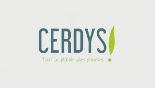 Logo_Cerdys