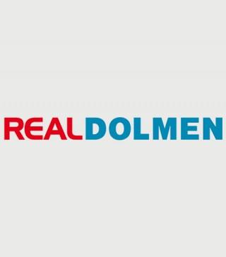 logo-realdolmen