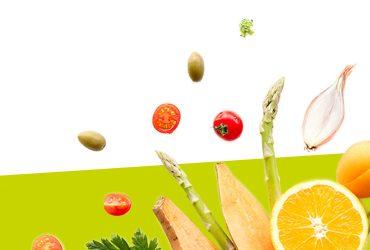 vegetal solutions