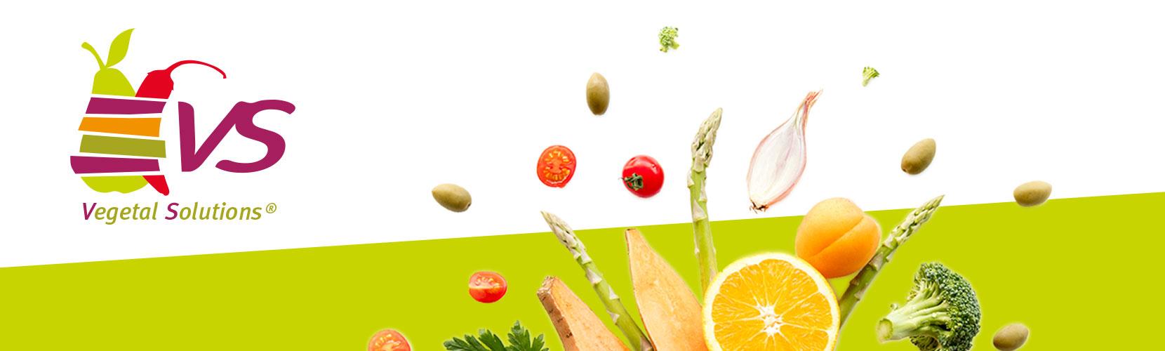 Témoignage : Vegetal Solutions