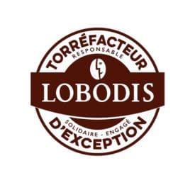 logo client lobo1